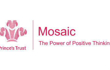 The Mosaic Programme